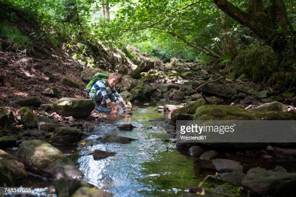 Little boy playing at brook in the woods
