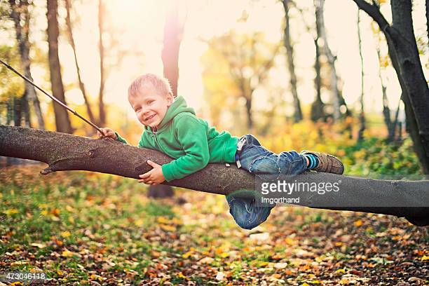Little boy playing on tree