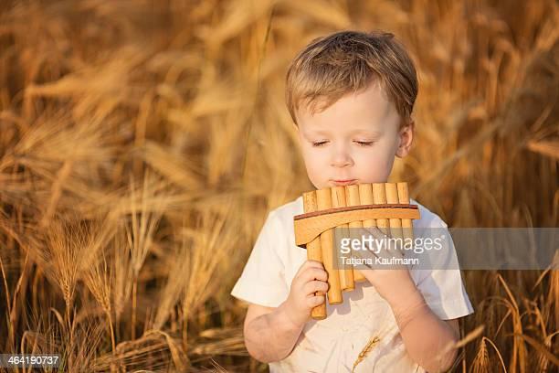 Little Boy playing Panpipe in Rye Field in Summer