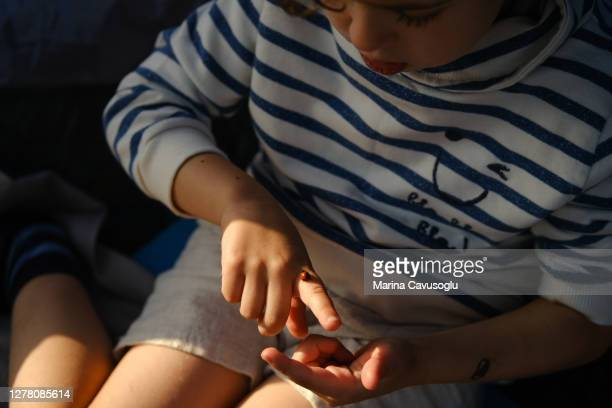 little boy playing with a little red ladybug on his hands. - coccinella foto e immagini stock