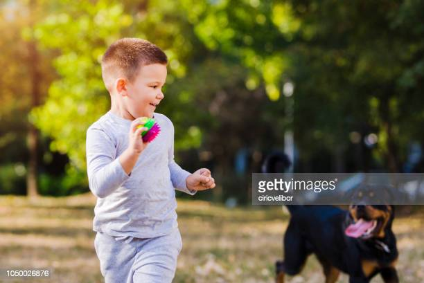 little boy playing with his dog - throwing stock pictures, royalty-free photos & images