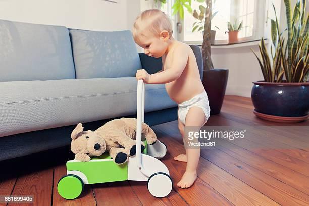 Little boy pushing around his cuddly toy in walker wagon