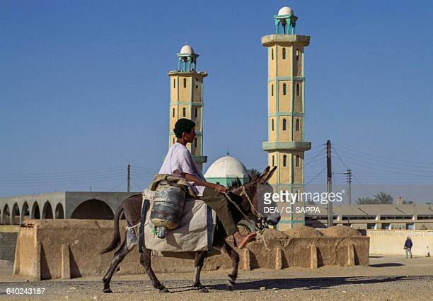 A little boy riding a donkey in front of the mosque in El Khoubna between Touggourt and El Oued Algeria