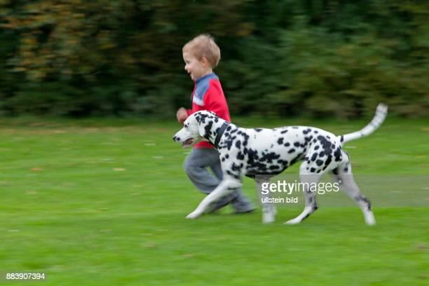 little boy running with a Dalmatian dog