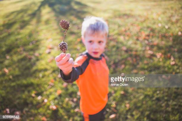 Little boy Showing Pinecones On Twig