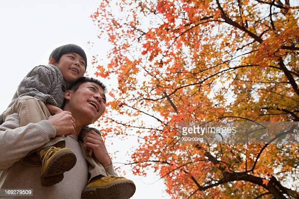Little boy sitting on his fathers shoulders, walking through the park in autumn