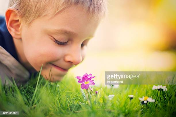 Little boy smelling spring flower