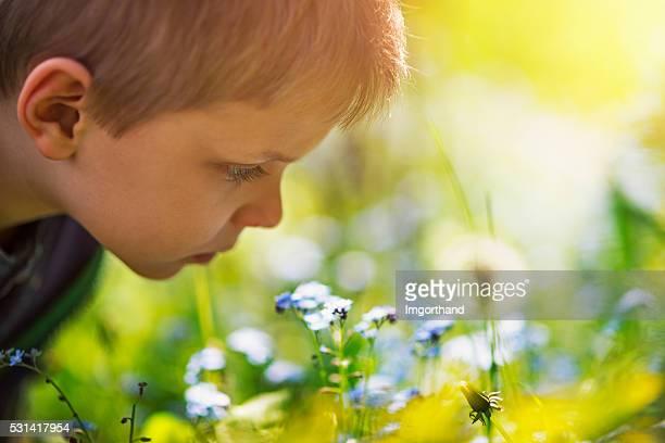 Little boy smelling spring flowers