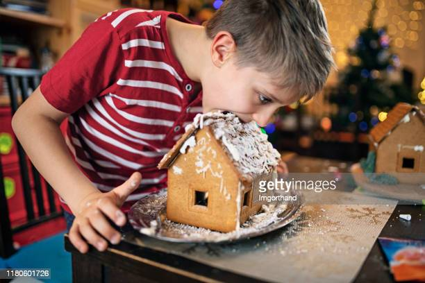 little boy starting to eat the gingerbread house - funny christmas stock pictures, royalty-free photos & images