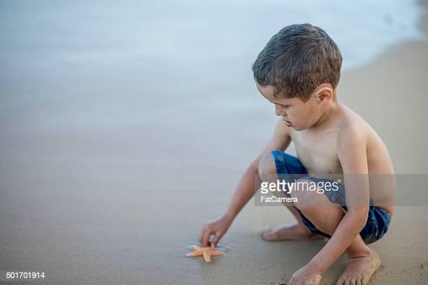 Little Boy Touching a Starfish