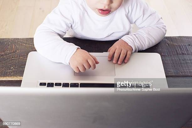 Little boy using laptop computer, cropped