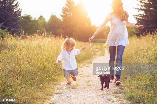 little boy walking in park with his mother and puppy - springtime stock pictures, royalty-free photos & images