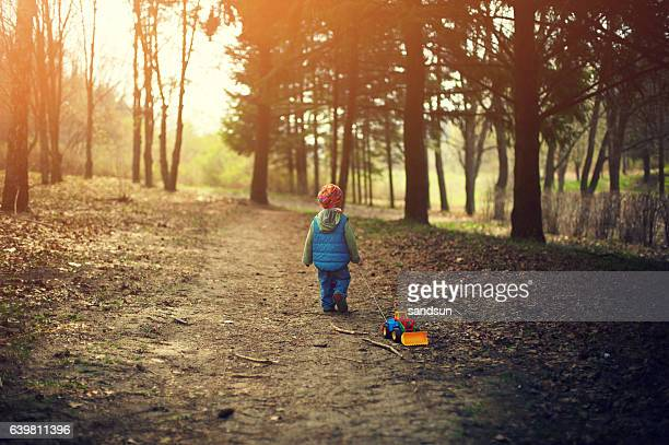 little boy walking in the forest