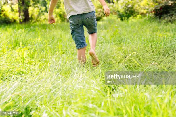 little boy walking in the grass - green shorts stock photos and pictures