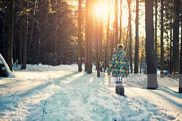 little boy walking in winter forest - one boy only stock pictures, royalty-free photos & images