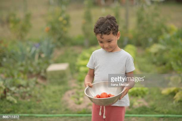 Little boy with a bowl full of cherry tomatoes