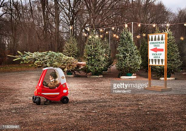 little boy with christmas tree on top of toy car - image photos et images de collection