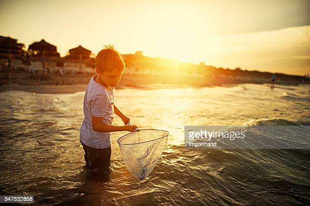 Little boy with fish net playing in sea on sunset