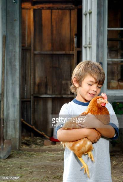 Kleiner Junge mit seinem Hinterhof Huhn