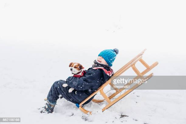 Little boy with his dog on a sledge in snow