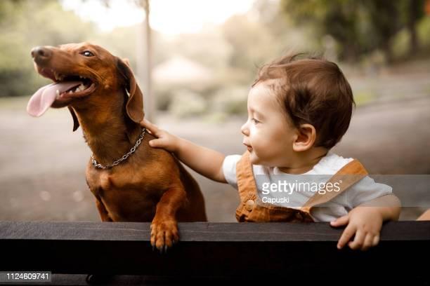 garotinho com seu cão - animal doméstico - fotografias e filmes do acervo