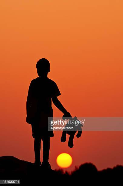 Little Boy With his Teddy Bear in the Summer Evening