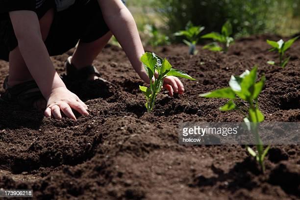 Little Boy Works In The Garden