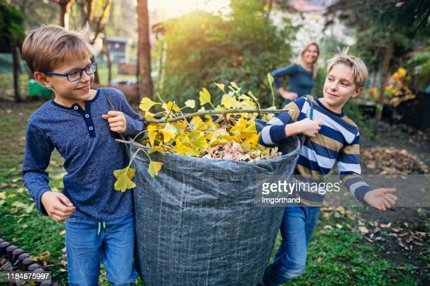 little boys collecting autumn leaves for composting - chores stock pictures, royalty-free photos & images