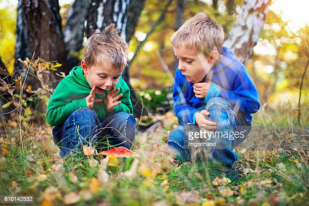 Little boys found an autumn toadstool