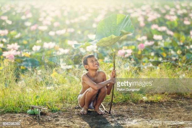 little boys sitting and playing water under lotus leaf, asian kid smiling and happiness playing water under lotus leaf after raining day at countryside in thailand. - junge in unterhose stock-fotos und bilder