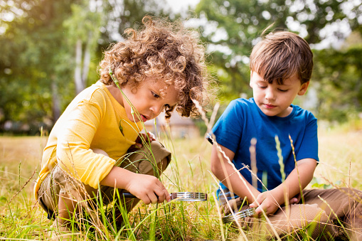Little boys using a magnifying glass in a park 470643156