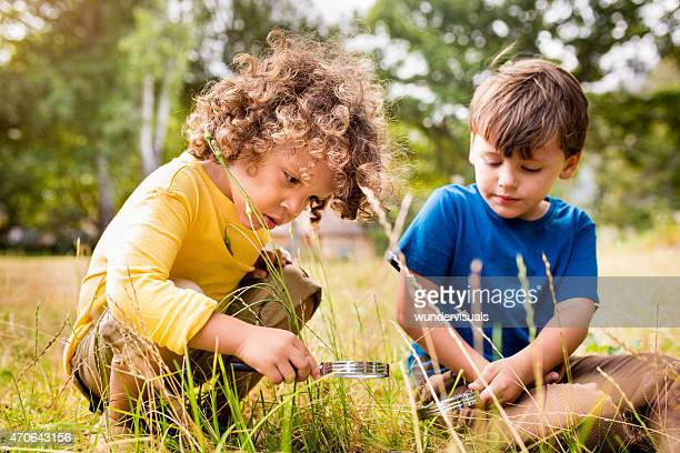Little boys using a magnifying glass in a park