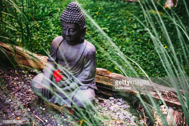 little buddha - sculpture stock pictures, royalty-free photos & images