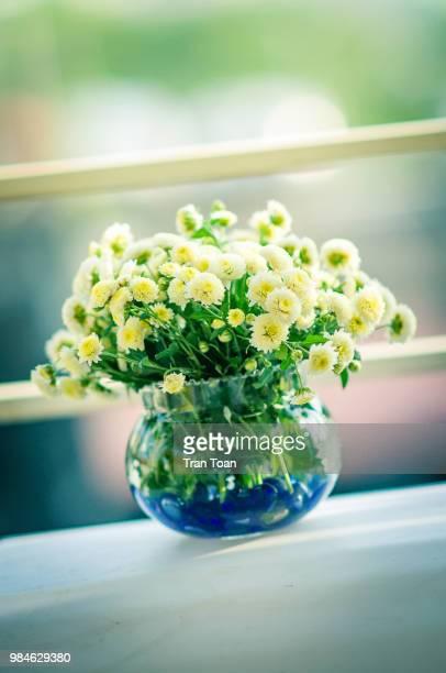 little daisy - bouquet de muguet fotografías e imágenes de stock