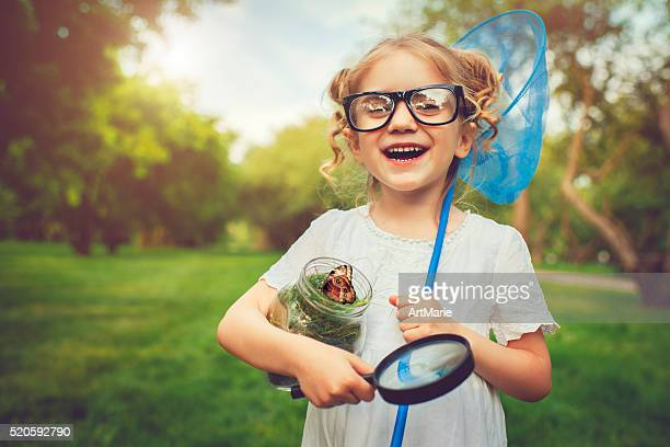 little explorer - insect stock pictures, royalty-free photos & images