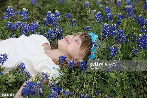 Little Fairy of the bluebonnet field