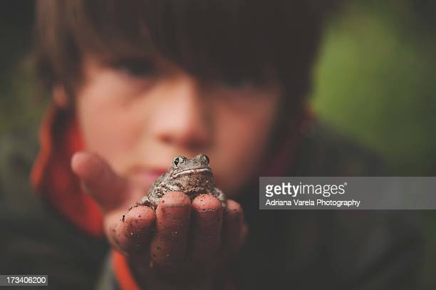 A little frog in his hands.
