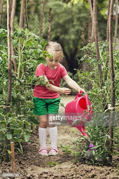 Little Jardinier