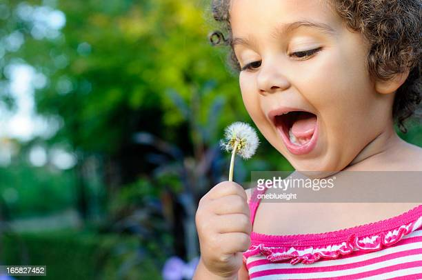 Little Girl, 3 Years Old, Is Blowing a Dandelion
