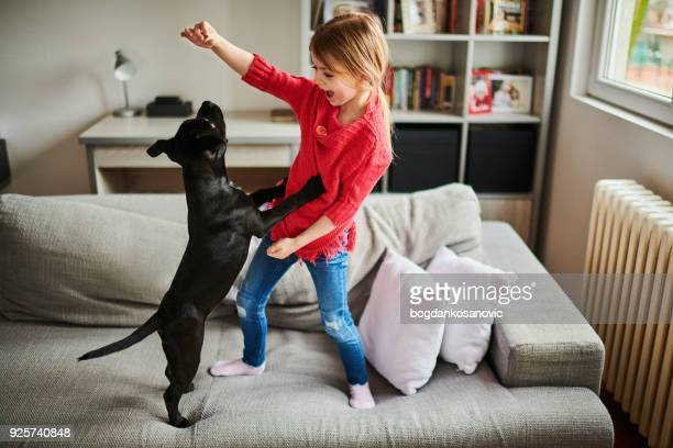 little girl and black puppy - domestic animals stock pictures, royalty-free photos & images