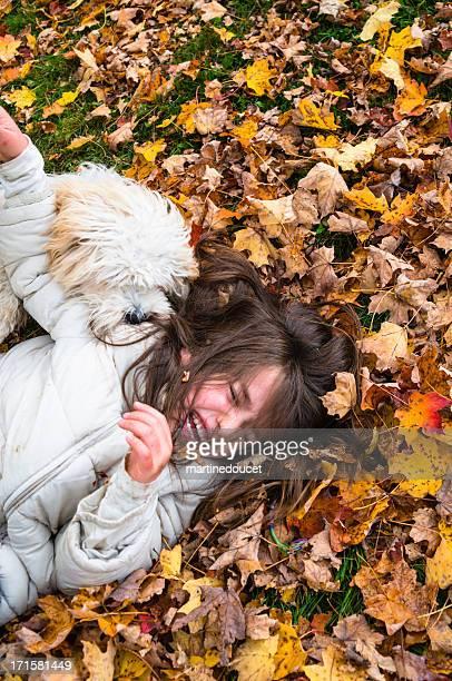 """niña y perros divirtiéndose ondulantes en otoño las hojas. - """"martine doucet"""" or martinedoucet fotografías e imágenes de stock"""