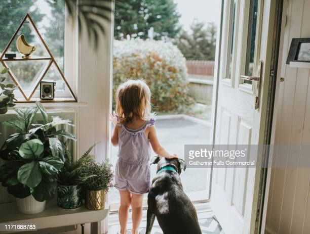 little girl and dog - greeting stock pictures, royalty-free photos & images