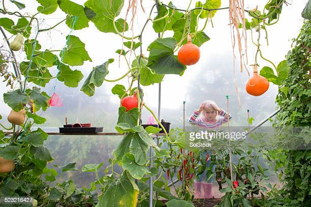 little girl and her greenhouse - green fingers stock pictures, royalty-free photos & images