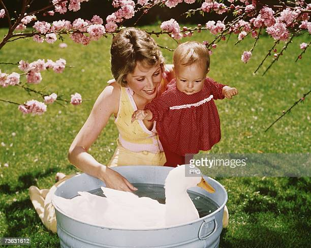 A little girl and her mother watching a large white duck have a bath in the garden circa 1965
