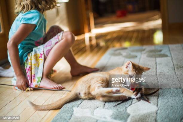 Little girl and kitten playing