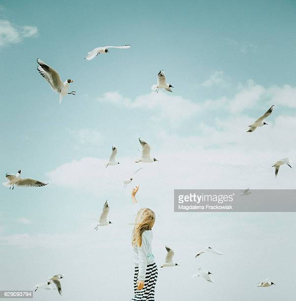 little girl and seagulls - innocence stock pictures, royalty-free photos & images