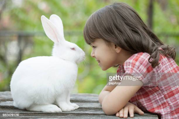 little girl and white rabbit - white rabbit stock pictures, royalty-free photos & images