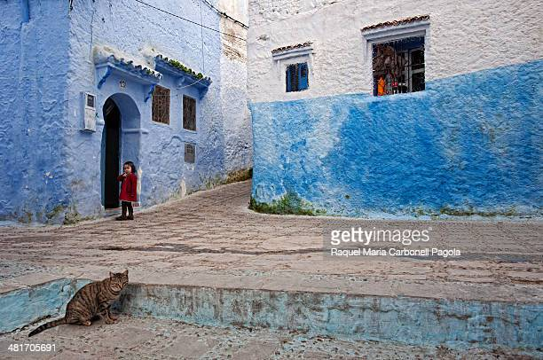 Little girl at a blue house doorway and cat on the streets