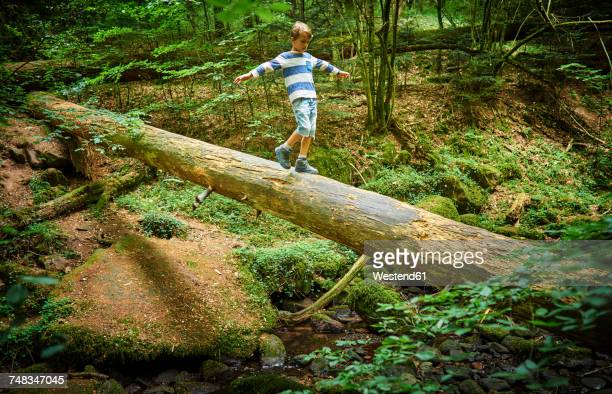Little girl balancing on tree trunk in the woods