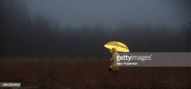 little girl crossing the field in fog - umbrella stock pictures, royalty-free photos & images